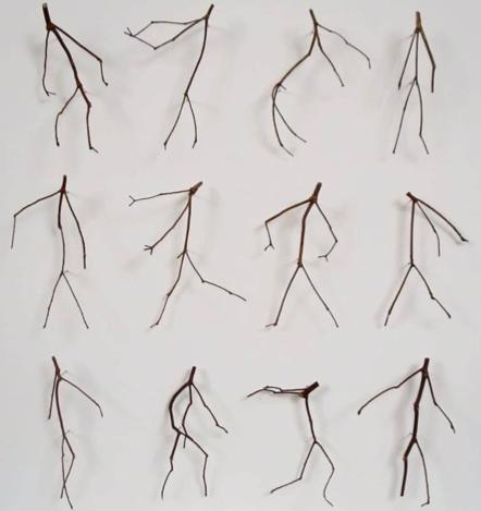 Twelve Twigs
